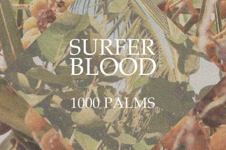 1000 Palms (Album review)