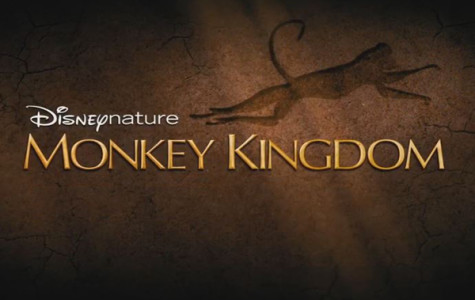 Monkey Kingdom exceeds the animal movie's status quo