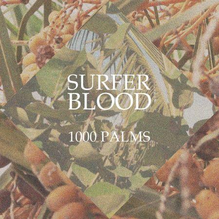 1000 Palms (Album review)