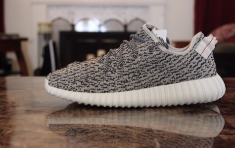 Yeezy Boost 350 were the first released shoe  of the 350's collection. The shoe pictured is the
