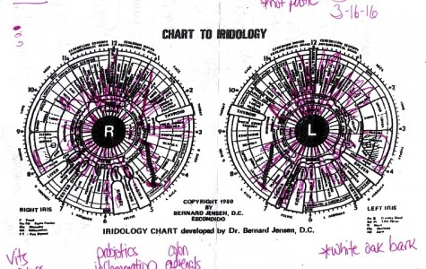 As Hannah read my eye, she scribbled notes onto a black and white print out of the Chart to Iridology. The marks located in the top left corner indicate the intensity of each characteristic identified in the iris. The shaded shape indicates a more profound strength or damage. The middle image represents a moderate problem and the bottom incomplete shape represents a problem in it's beginning stages. As she read my eye, she wrote names of potential vitamins that could help and cure my medical needs. At the end of the reading, she took the list and conducted a muscle test.