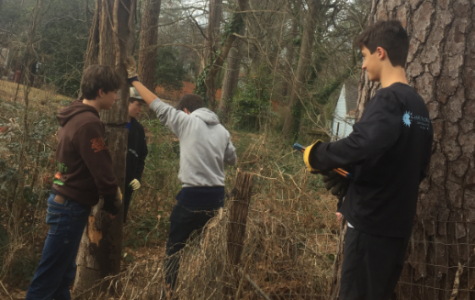 Students volunteer at MLK Service Project