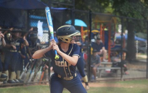 Softball crushes first playoff round; falls to Walnut Grove in second