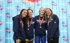 State meet goes swimmingly