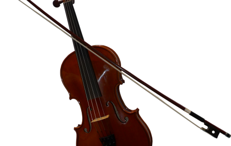 DHS creates new orchestra class for upcoming school year