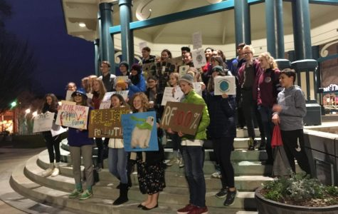 Decatur students protest for 100% renewable energy
