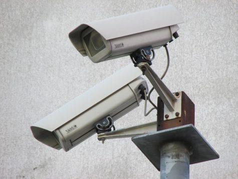 Atlanta City Council Votes to Install Cameras in Public Parks